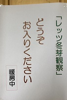 IMG_7024.JPG